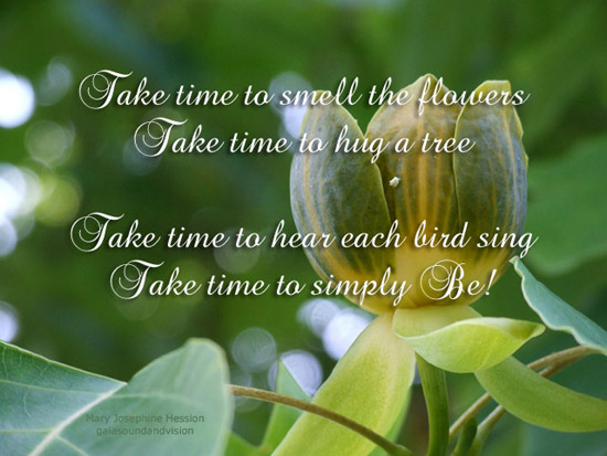 Take Time To Smell The Flowers. Free Poetry ECards