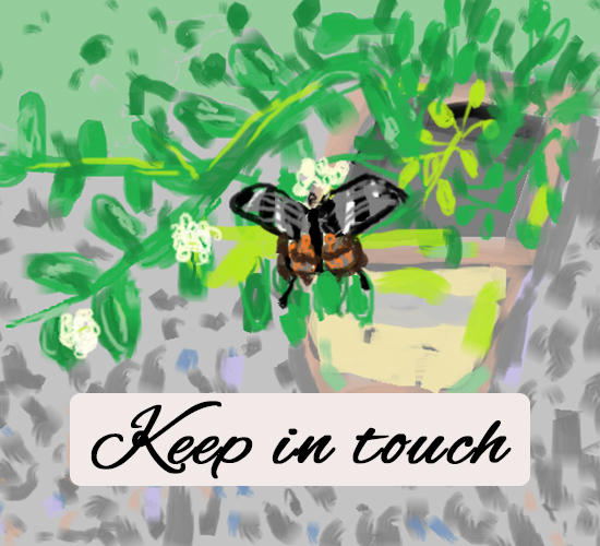 Keep In Touch  Butterfly...