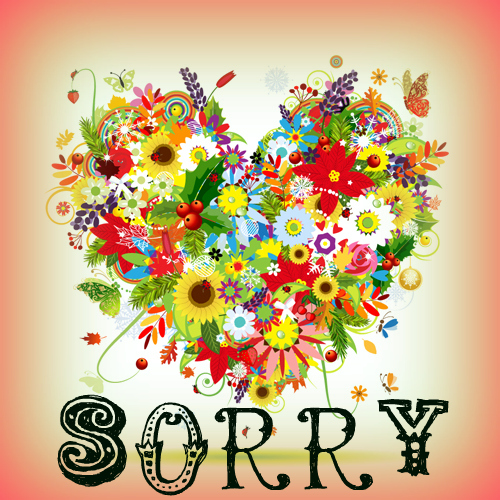 I Am Sorry For Being So Rude...
