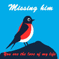 Missing Him, Bird