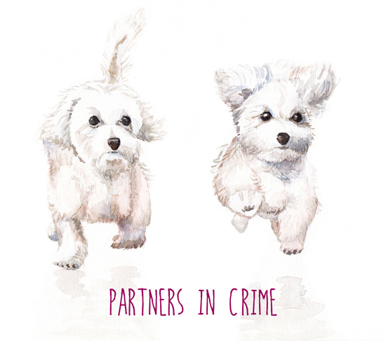 Partners In Crime.