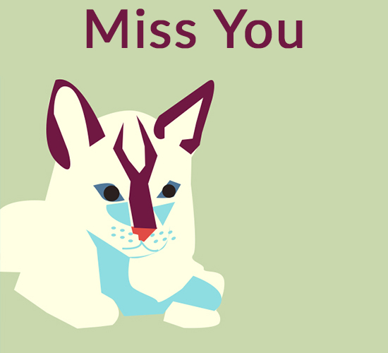 Miss You Says Cat.