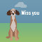 Miss You Says Doggy!!