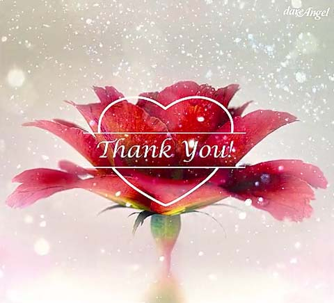 Thank You Cards Free Thank You Wishes Greeting Cards 123 Greetings