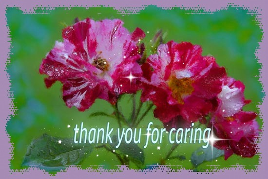 Thank You For Caring...