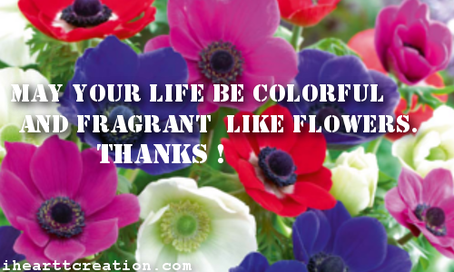 Colorful Fragrant Life.